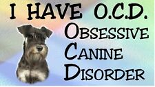 MINIATURE SCHNAUZER - OBSESSIVE CANINE DISORDER Dog Car Sticker By Starprint