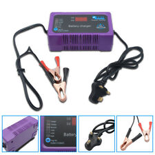 12V/24V 200AH Electric Car Dry&wet Battery Charger Intelligent Pulse Repair Auto