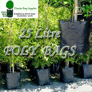 25 litre Premium Planter Bags - varying quantities. Poly Plant bag, Grow bag