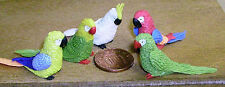 1:12 Scale 4 Large Mixed Parrots & A Cockatoo Dolls House Miniature Exotic Birds