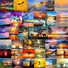 Painting By Numbers Kit Sunrise DIY Oil Coloring Deco Paint Drawing Art Pictures