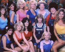 Hee Haw Girls Misty Rowe Gunilla Hutton Lisa Todd Minnie Pearl 8x10 photo T4297