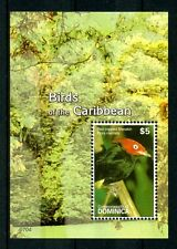 Dominica 2007 MNH Birds of Caribbean 1v S/S Red-capped Manakin Stamps