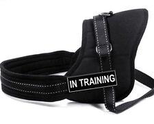 Black Dog Harness Walking Service Dog Vest Handle Padded Sports Dog Harness Set