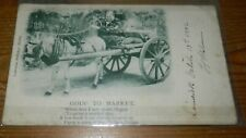 """PICTURE POSTCARD: IRELAND 1902 """"GOIN' TO MARKET"""" (with Limerick cds)"""