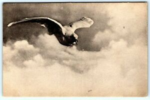 Postcard~ Seagull Flying In The Clouds~ A254