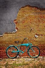 Schwinn Bricks by Todd Van Fleet Bike Cycling Bicycle Canvas Giclee 36x24