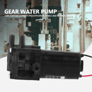 ZC-A250 Mini Pumpe Wasserpumpe Selbstsaugend Zahnrad Zahnradwasserpumpe 12V ♤