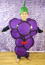 Halloween Party Purple Fruit Grape Whole One Piece Kid Unisex Costume Set Prop