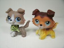 Littlest Pet Shop Two Collie Dogs Lot