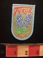 Souvenir TEXAS Jacket Patch ~ Flowers 75X4