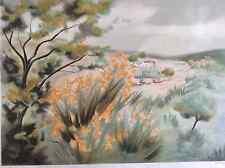 Grande Lithographie Provence Les Genets signé Zarou EA 9-25