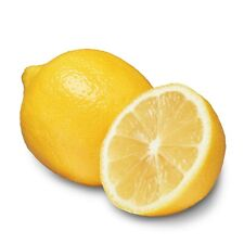 12 Real Lemons - Prime Picked Fresh Fruit to Your Door