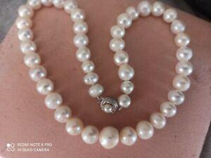 Collana grandi perle australiane, gancio in argento con vera perla akoya