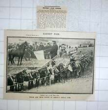 1909 Welsh And Irish Ponies At Barnet's Annual Pony Fair