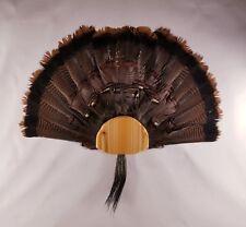 DIY Turkey Fan & Beard Mount Kit