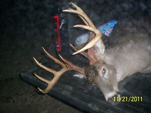 Kentucky Deer Hunting, Whitetail Hunt Zone 2
