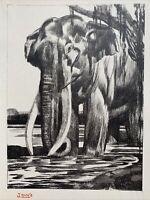 GRAVURE Art Deco Éléphant Elefant signée PAUL JOUVE
