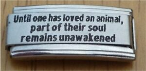 Italian Charms Superlink Love Death  L46 Cat  Dog Until one has loved
