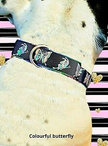 martingale collars- butterfly *sewing diploma*