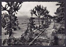 VERONA LAZISE 04 LAGO DI GARDA - GIARDINI Cartolina FOTOGRAFICA viaggiata 1957