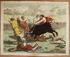 IL TORO FURIOSO - Incisione Originale 1800 B. Gagneraux - Taureau Bull
