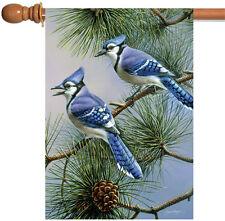Toland Blue Jay Duet 28 x 40 Colorful Bird Pine Tree House Flag