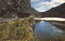 Postcard New Zealand N.Z. Hawks Crag, Buller Gorge. West Coast