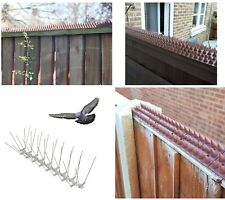 Fence Wall Window Ledge Spikes Anti Climb Pigeon Birds Cat Repellent Spikes