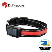 LED Light Dog Puppy Pet Collar Solar/USB Rechargeable Waterproof Safety Flashing