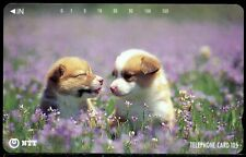 #106 NTT JAPAN Phonecard - 105 units -  Picture of puppies in  a meadow / field