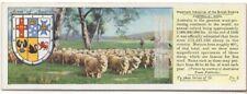 Australia Sheep Wool Production Lamb Farming c80 Y/O Trade Ad Card