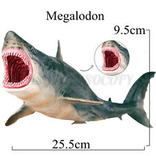 Megalodon Model Great Shark Figure Ocean Animal Kids Toy Gift Educational Home