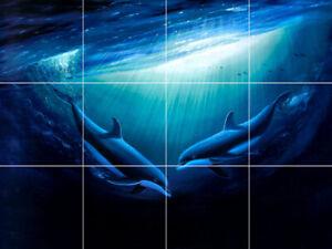 dolphins fish reef blue sea ocean marine ceramic tile mural medallion backsplash
