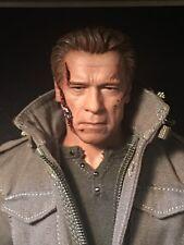 Hot Toys Custom MMS307 Terminator Genisys T-800 Guardian/Pops Schwarzenegger