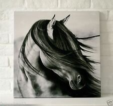 Handcraft Animal oil painting on canvas(no stretch) Black Horse thinking 24x24