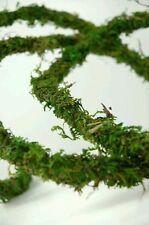 Natural Moss Vine Viv Decoration for plant, bio active gecko chameleon amphibian