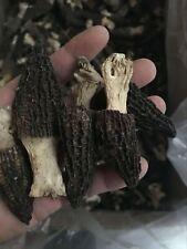 Dried Premium Morel Mushrooms. Altai Republic (Wild Morchellas) 137g (4.83 oz)