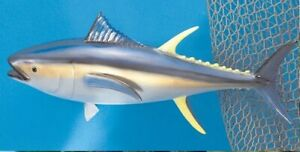 "Taxidermy  Yellow Fin Tuna 12"" Fish Mount - Wall mount Decor -Fish Replica"