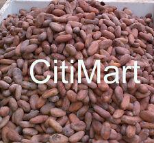 2Kg Raw Organic CACAO Fagioli WEST AFRICAN semi di cacao Grado A