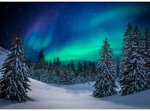 Aurora Northern Lights Fabric Quilt Panel Digital Print Quilt Shop Quality