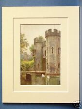 WELLS PALACE SWANS SOMERSET VINTAGE DOUBLE MOUNTED HASLEHUST PRINT 10X8 OVERALL