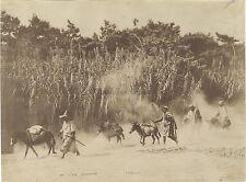 Scène orientaliste Afrique du Nord Photo Famin Vintage ca 1875