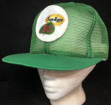 Vtg Sun Rype BC Brand Mesh Trucker Hat Snapback Patch Juice Logo Cap Fruit Green