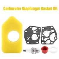 Carburetor Diaphragm Gasket Air Filter for Briggs Stratton 495770 795083 698369