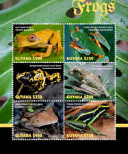 Guyana  2018 Frogs I201805