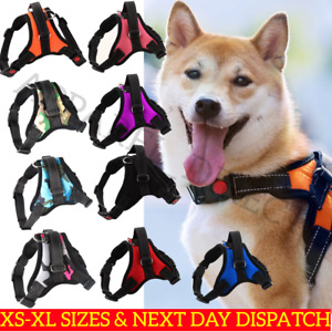Dog Harness Non-Pull Adjustable Pet Puppy Walking Strap Vest Soft Chest Belt UK