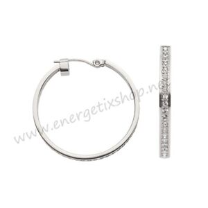 Energetix Magnetic Decoration Stainless Steel Earrings for Ladies 3181