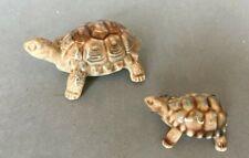 Two Wade Tortoises Medium & Small