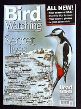 Bird Watching, Dec. 2006, Little Known facts About The Great Spotted Woodpecker